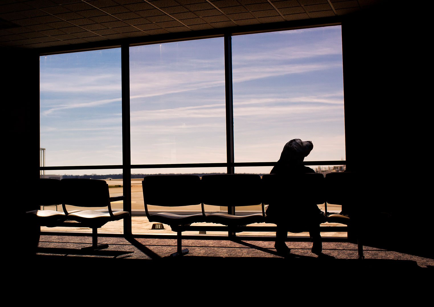 Stock image of person waiting at airport from Gratisography