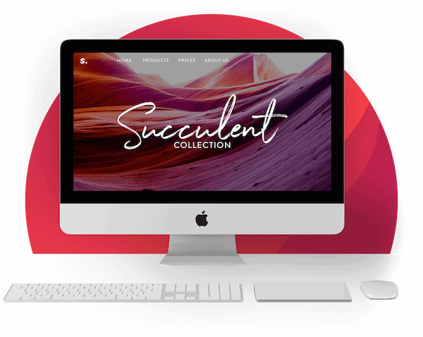 professional website design by Tailor experts