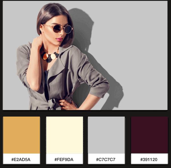 luxury fashion brand color palette