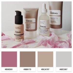 beauty blog color palette