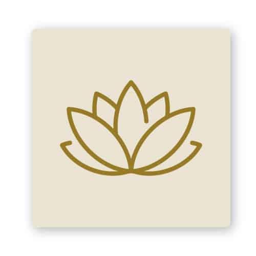icon for spa logo