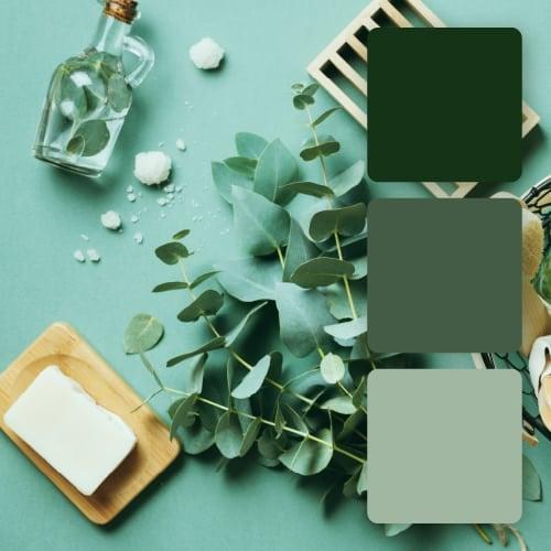 color palette for spa logos